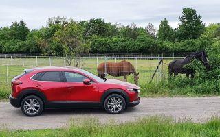 Mazda CX-30 — компактный внедорожник нового поколения