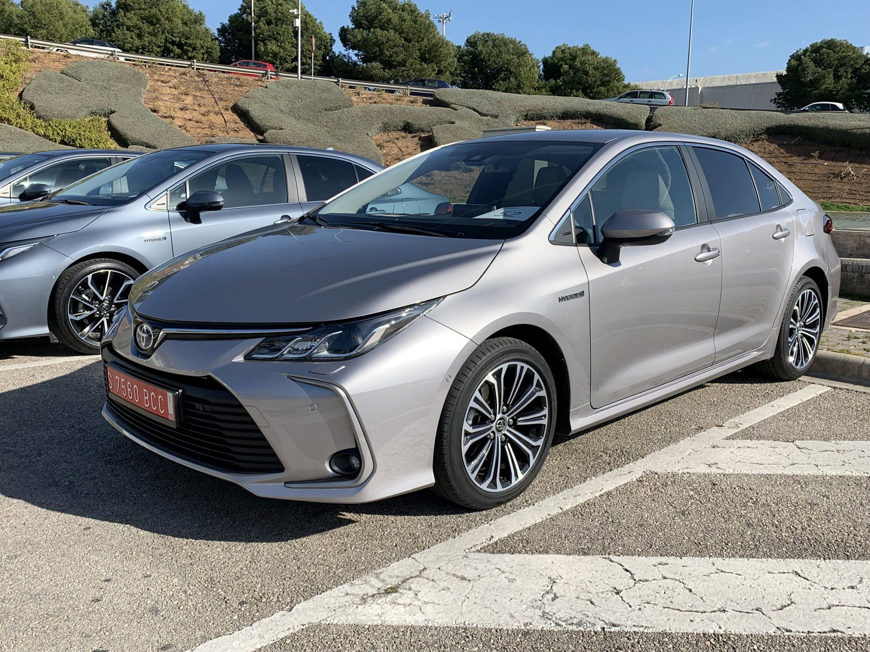 Toyota Corolla седан фото спереди