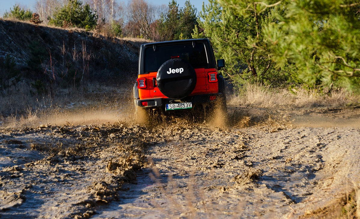 Jeep Wrangler Unlimited вид сзади