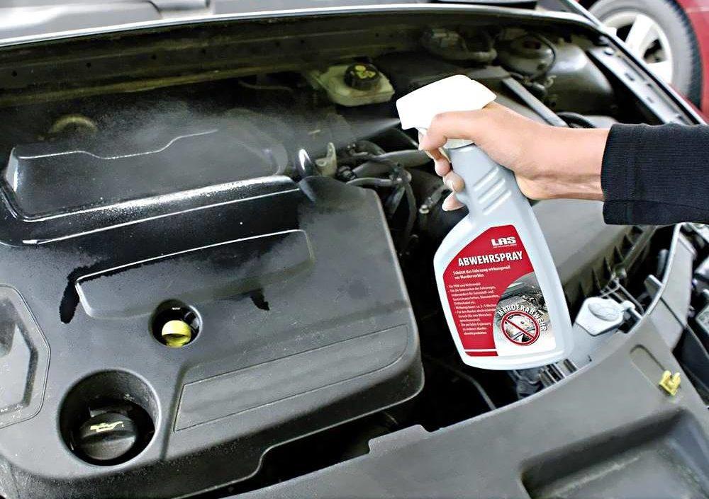 Мойка бензинового и дизельного двигателя